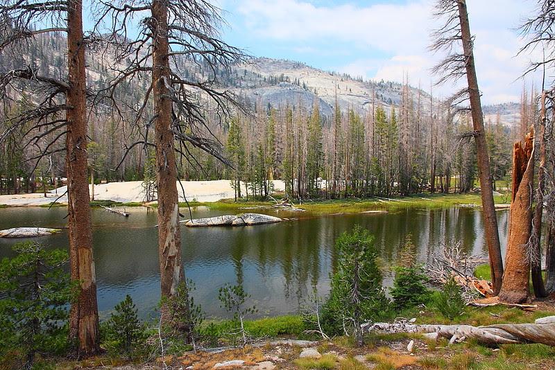IMG_0793 Vogelsang to Merced Lake via Fletcher Creek