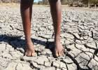 Hábitos saludables para luchar contra el calentamiento global