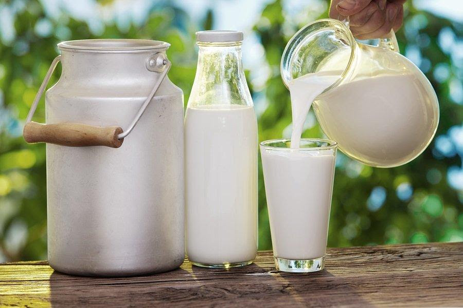 Study: How Raw Milk Boosts Immunity and Prevent Colds?