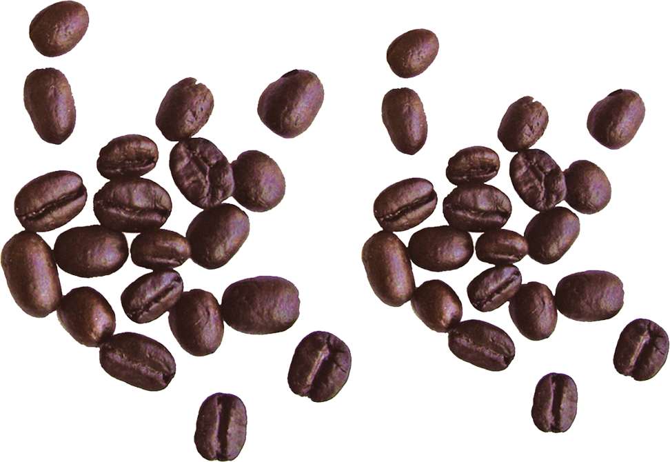 Coffee beans PNG image