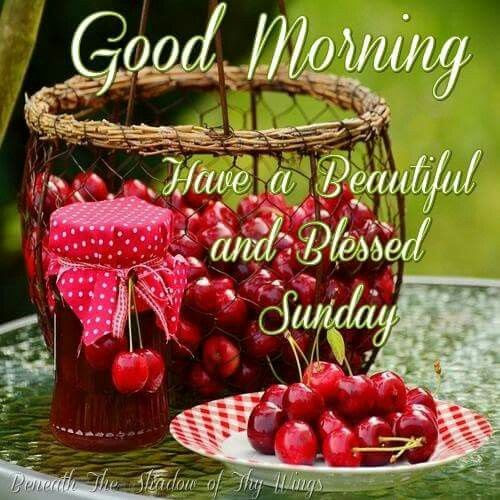 Good Morning Have A Blessed Sunday 12231 Movieweb