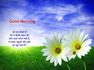 Best Good Morning Images In Hindi हद गड