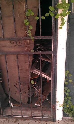 2919 Leonidas - the front door