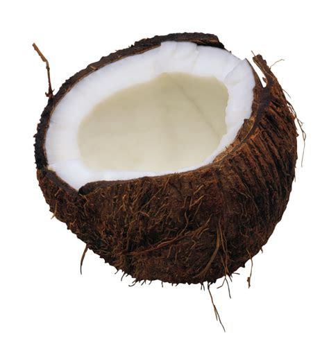 coconut png transparent images png