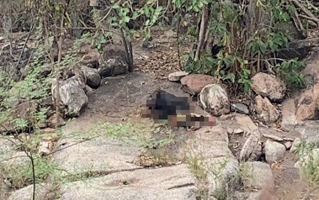 Idoso é encontrado morto na zona rural de Nova Fátima. Corpo estava parcialmente carbonizado
