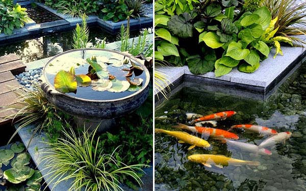 outdoor-fish-tank-pond-woohome-16