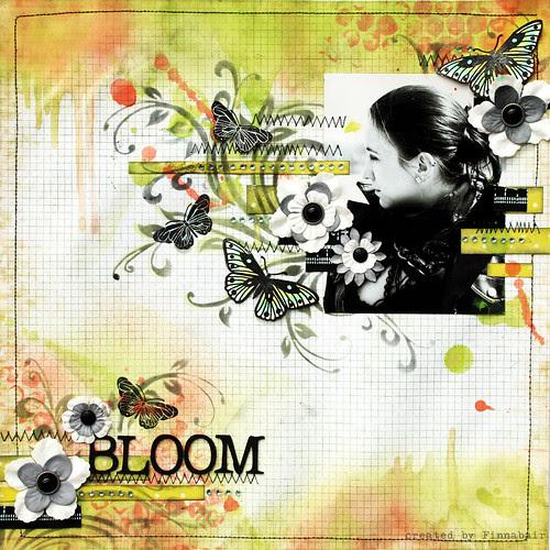 Kwitnij - Bloom