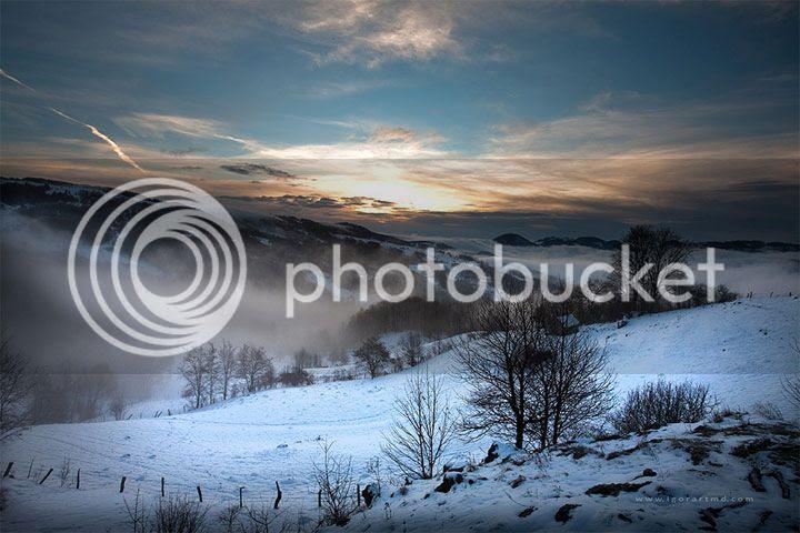 photo Igor-Sirbu-5_zps531abd55.jpg