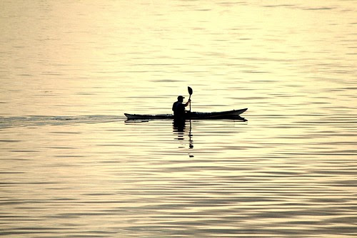 Sea Traveller