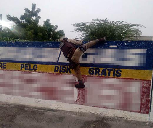 Policial pulando muro para ter acesso a terreno onde foram encontrados os pés de maconha | Foto: Divulgação/ PM