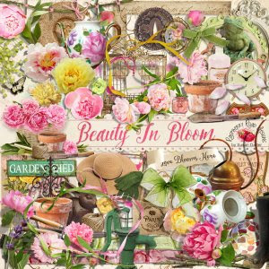 Beauty In Bloom Elements