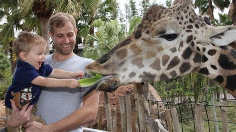 Tampa?s Lowry Park Zoo introduces new passes and prices