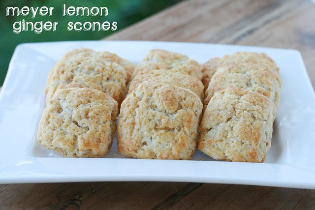 Meyer Lemon Ginger Scones - Lemon Week 2011