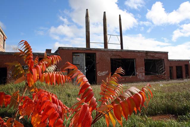 Burwash Industrial Farm (Camp Bison)
