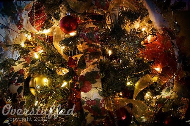 IMG_5694 Christmas Tree 2012 web