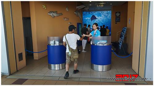 新江之島水族館05.jpg