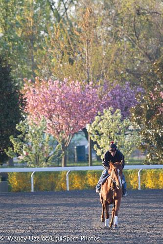 morningworks_04.11.2010_esp_wu-9437
