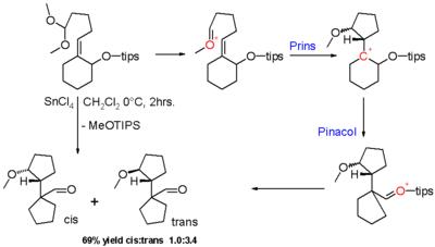 Scheme 8. Halo-Prins reaction
