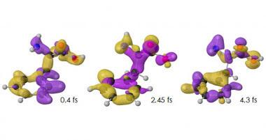 """<p class="""" text-left"""">Variación de la densidad de carga con el tiempo para el isómero confórmocional o <a href=""""https://es.wikipedia.org/wiki/Isomer%C3%ADa_conformacional"""" target=""""_blank"""">confórmero</a> más estable del aminoácido fenilalanina (con el tiempo expresado en femtosegundos). El exceso o defecto de carga respecto al valor promedio se representa, respectivamente, en color amarillo o púrpura. / UAM</p>"""