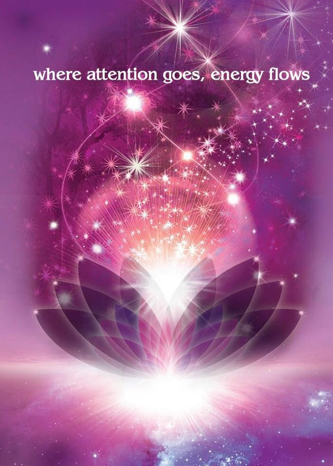 Poems Of Mindfulness Where Attention Goes Energy Flows