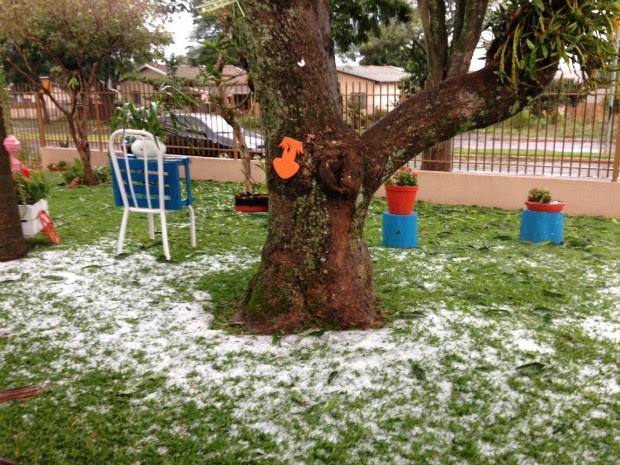 Pedras de gelo que caíram na manhã desta sexta-feira (10) permaneceram nos quintais até o fim da manhã (Foto: Raquel Moraes / RPC)