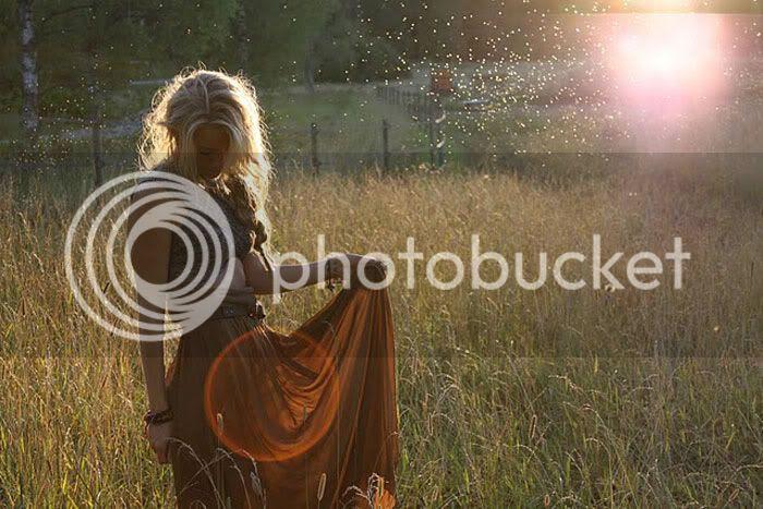field,morning light,braid
