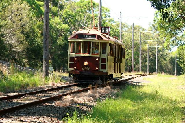 Tram 249 Loftus