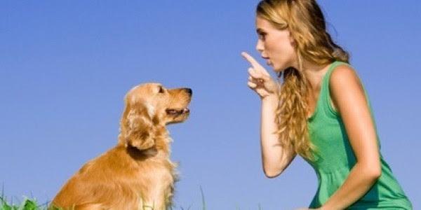 come comprendere il linguaggio del cane