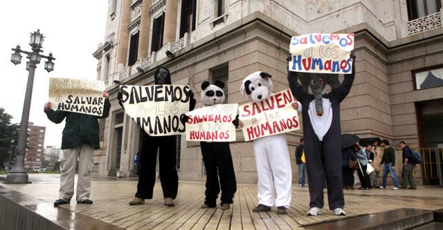 Un grupo de activistas Pro Vida se manifiestan en Montevideo. | Efe