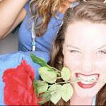 Jess Stipe