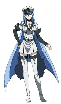 Akame Ga Kill Ice Lady