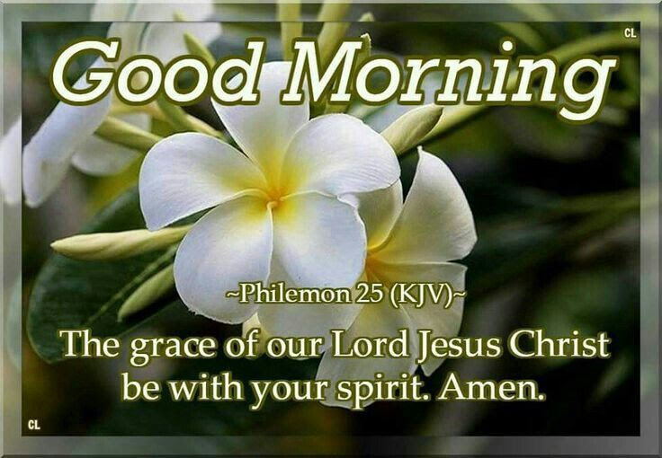 Good Morning The Grace Of Our Lord Jesus Christ Be With Your Spirit