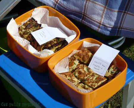 picnic_sal__4