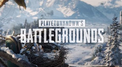 pubg ban  year  moves bombay high court seeking ban