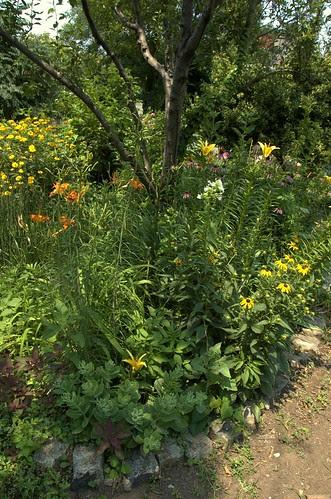 Warren-St Marks Community Garden