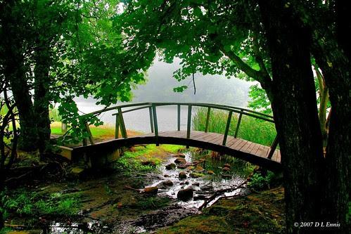 The Arched Footbridge