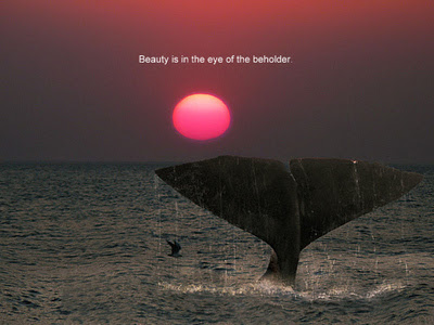 Body Quotes People Often Say That Beauty Is In The Eye Of The