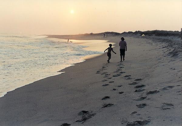 Alison Boylston Piazza, South Beach, Autumn Beach, golden fall, Edgartown