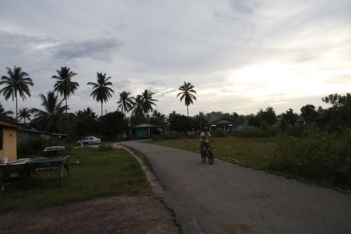 Idyllic evening in the village