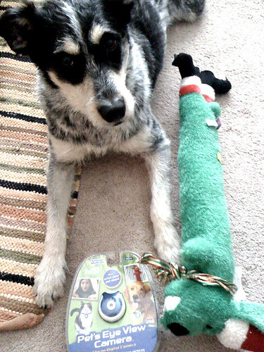 norwood & his xmas gifts