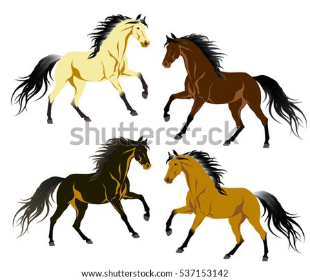 Vector Running Gray Arabian Horse Isolated Stock Vector ...