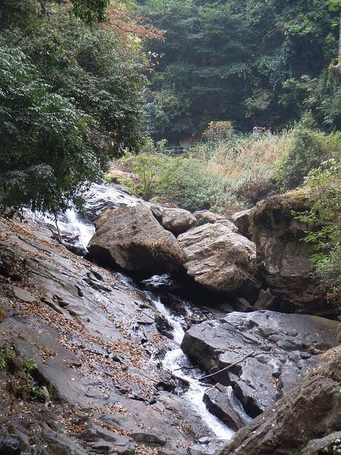 Brahmagiri_Trek_Irupu_Falls4