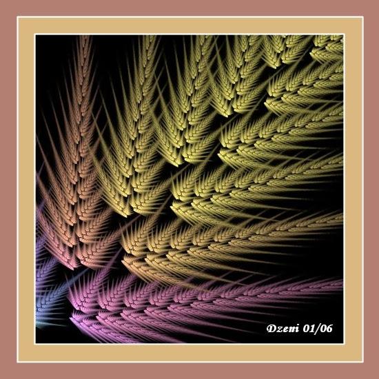 Sunrise Wheat