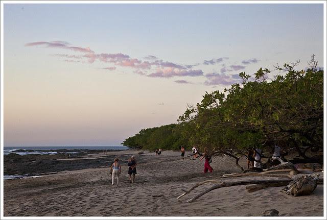 Tamarindo 2011-01-15 1