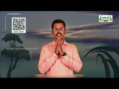3rd Maths  Numbers  எண்கள்  பெருக்கல் அலகு1 பகுதி 3  Kalvi TV