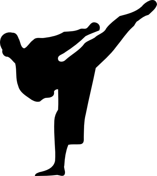 Image result for karate kick