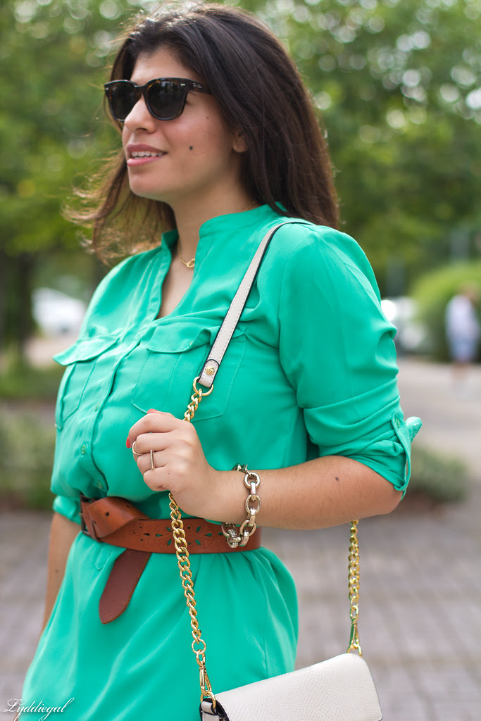 shirt dress and leopard wedges-4.jpg
