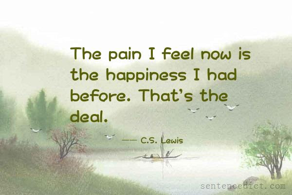 Good Sentence Appreciation The Pain I Feel Now Is The Happiness I