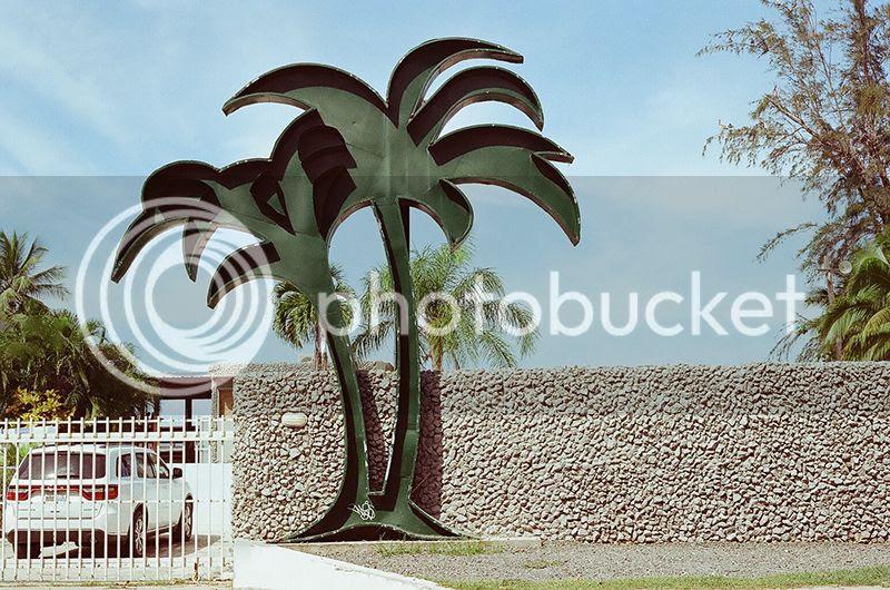 Puerto Rico, Contax G2, Film, 35mm, Tropical, Palm trees, Architecture, beach photo Metalpalm_zpsgenttls7.jpg