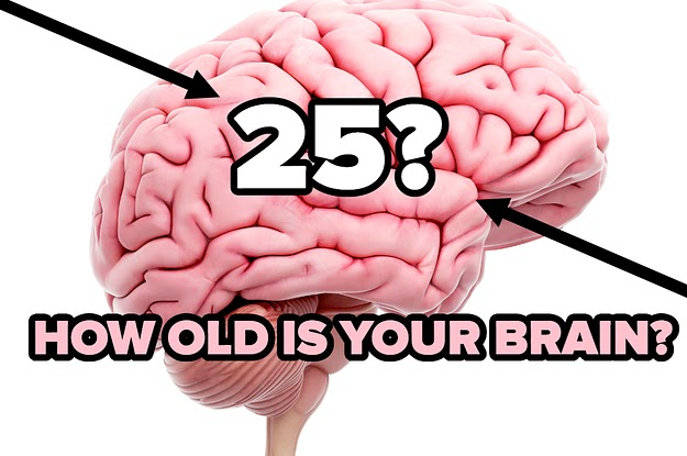 Trust The Process, This Quiz Will Accurately Guess How Old Your Brain Is